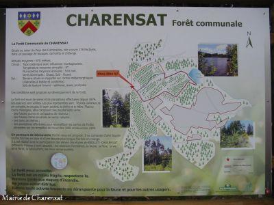 charensat_foret